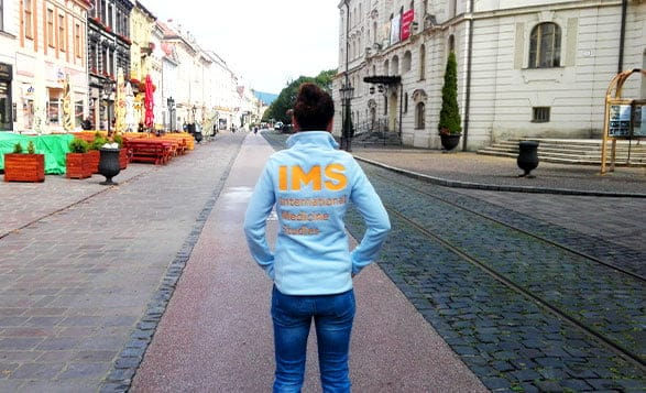 IMS.team